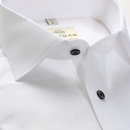S310329600-collar