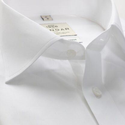 s310318900-collar-2