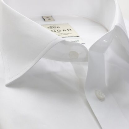 s310318900-collar-2-2