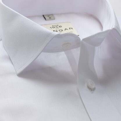 s310329300-collar-2-2