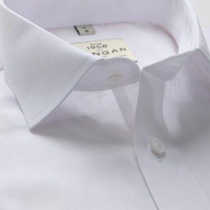 s310329300-collar-2-3